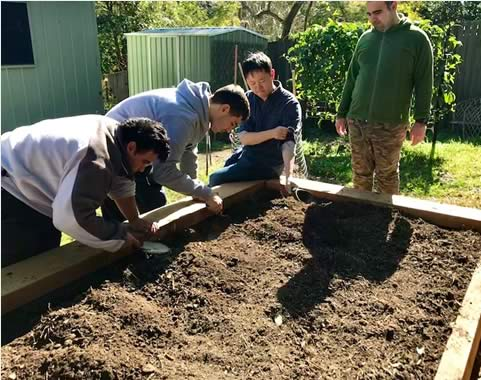 Volunteers preparing garden beds for planting
