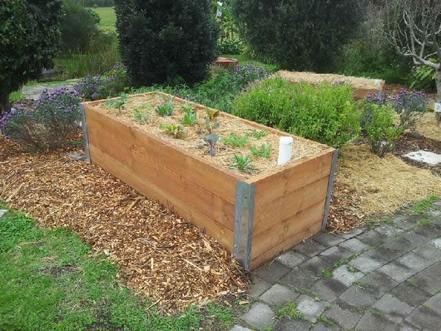 Raised Wicking Garden
